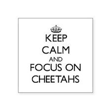 Keep calm and focus on Cheetahs Sticker