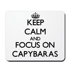 Keep calm and focus on Capybaras Mousepad