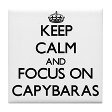 Keep calm and focus on Capybaras Tile Coaster
