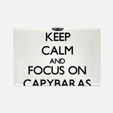 Keep calm and focus on Capybaras Magnets