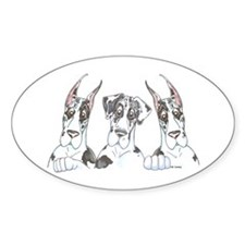 CNCH Lookover Oval Decal