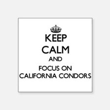 Keep calm and focus on California Condors Sticker