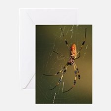 golden orb weaver spider Greeting Card