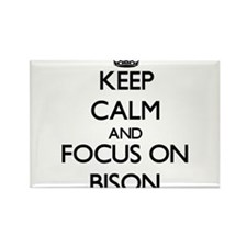 Keep calm and focus on Bison Magnets