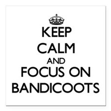 Keep calm and focus on Bandicoots Square Car Magne