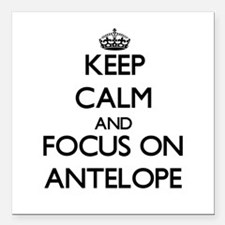 Keep calm and focus on Antelope Square Car Magnet