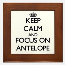 Keep calm and focus on Antelope Framed Tile