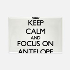 Keep calm and focus on Antelope Magnets