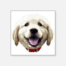 """GoldenRetriever_face001 Square Sticker 3"""" x 3"""""""