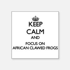 Keep calm and focus on African Clawed Frogs Sticke