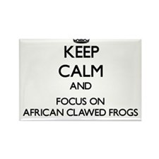 Keep calm and focus on African Clawed Frogs Magnet