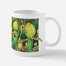 Darlingtonia Mug