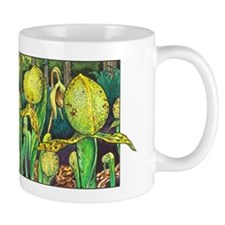 Darlingtonia Mug