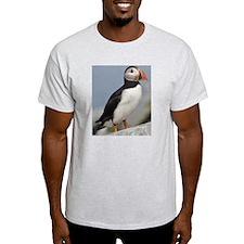temp_ipad2_folio_cover T-Shirt