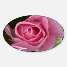 Rose Pink Sticker (Oval)
