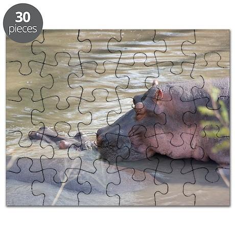 Hippo Sleeping Puzzle