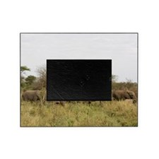 Herd of Elephants Picture Frame