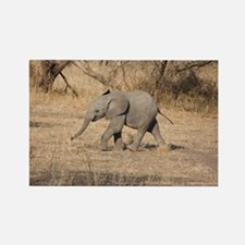 Baby Elephant Rectangle Magnet