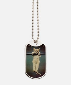 Hang in There Baby! Dog Tags