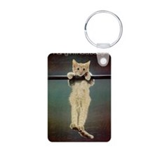 Hang in There Baby! Keychains