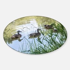 Ducks on a Reflection Pond Decal