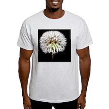 White Dandelion Flower Plant T-Shirt