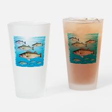 Walleye school Drinking Glass