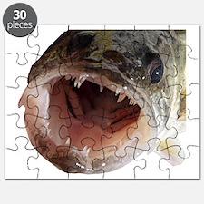Walleye teeth Puzzle
