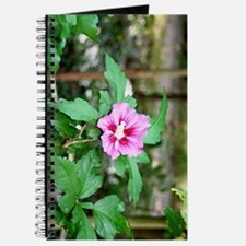 Rose of Sharon Journal