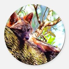 Fox Close Up Round Car Magnet