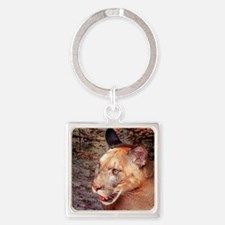 Florida Cougar, Left, pose Square Keychain