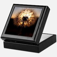 Glow Keepsake Box