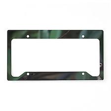 Java Sparrow License Plate Holder