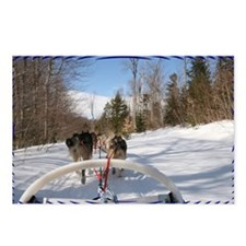 Dogsled View Postcards (Package of 8)