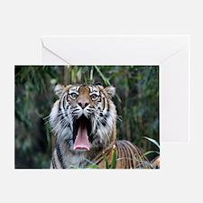 Love hunger Sumatran tiger Greeting Card