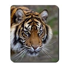 Power confidence peace and calm Sumatran Mousepad