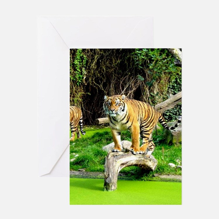 Ready for success Tiger - Copy (3) Greeting Card
