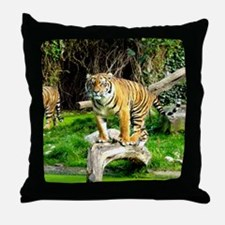 Ready for success Tiger - Copy (3) Throw Pillow