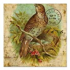 "Vintage Thrush Square Car Magnet 3"" x 3"""
