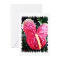 Anthurium Greeting Cards (Pk of 10)