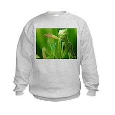 Miscellaneous Sweatshirt