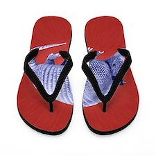 Purple Armadillo on Red Flip Flops