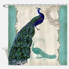 Vintage Peacock Etchings Scroll Swirl Watercolor S