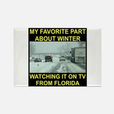 Watching It On TV In FLA Rectangle Magnet