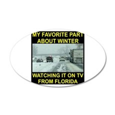 Watching It On TV In FLA Wall Decal