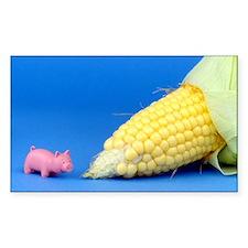 Pig Corn Stickers
