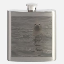 Harbor Seal Flask