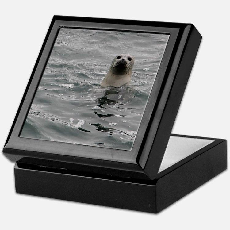 Harbor Seal Keepsake Box