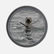 Harbor Seal Wall Clock