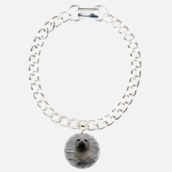 Harbor Seal Bracelet